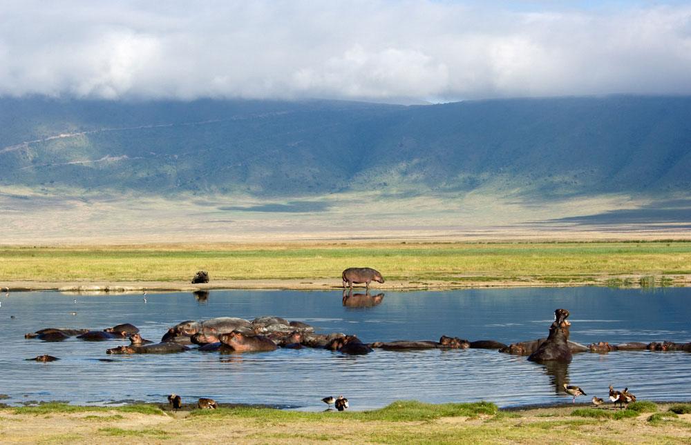 Ngorongoro Conseravtion Area
