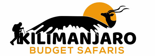Kilimanjaro Budget Safaris - Tanzania Wildlife Safaris (Serengeti large wildebeest migration, Safari Big cat), Mount Kilimanjaro Trekking, Cultural Safaris(maasai, Hudzabe, chaga), Zanzibar Beach Holidays safaris,