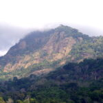 Udzungwa National Park
