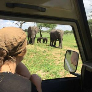 5 DAYS LUXURY SAFARI