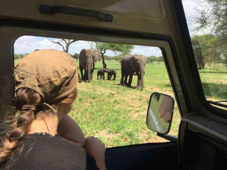 4 days tarangire serengeti and ngorongoro crater 768x576 1