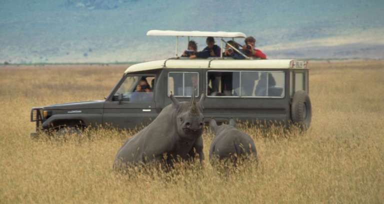 safari 9 1 768x409 1